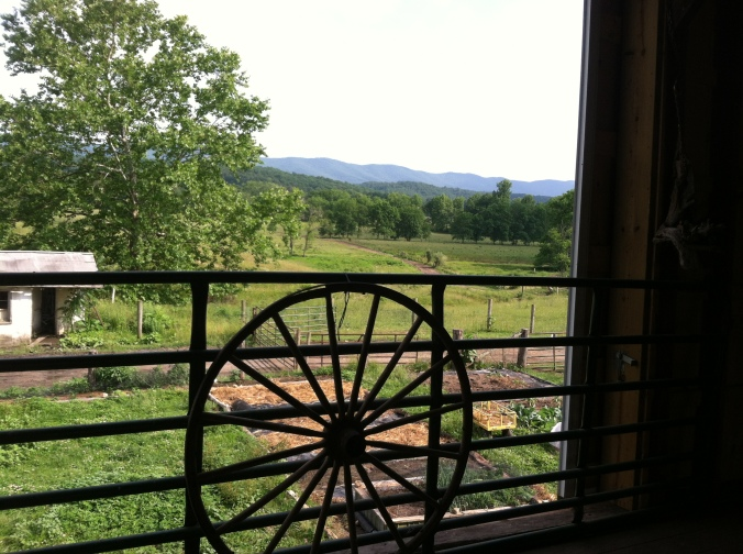 Our beautiful view for Yoga in the Barn